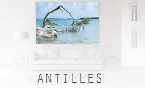 2 thema antilles