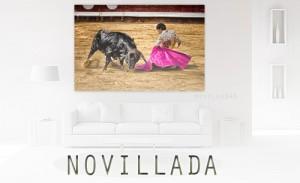 2 thema novillada